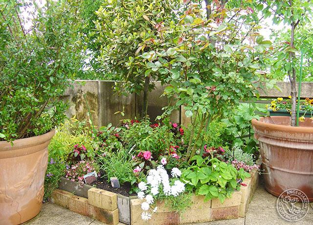 Contrat meudon ange jardin for Contrat entretien jardin