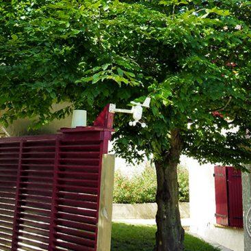Abattage et dessouchage d'arbre dans l'Essonne Ange Jardin